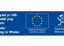 Support and Funding for Research and Innovation: What Welsh Businesses Need to Know