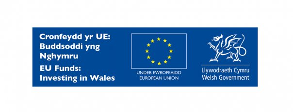 Image: Support and Funding for Research and Innovation: What Welsh Businesses Need to Know